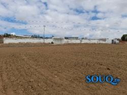2 lots de terrain à Sanhaja à vendre